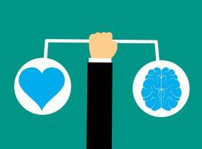 Lavylites - Herz und Gehirn