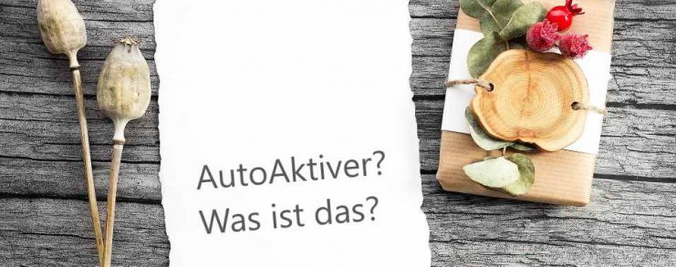Business - Was ist Autoaktiver