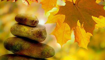 Erfahrungsberichte - Bunter Herbstblues